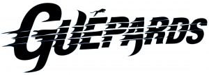 Logo signature
